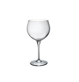Bormioli 170020  Premium 5  6/1 55cl vinska čaša